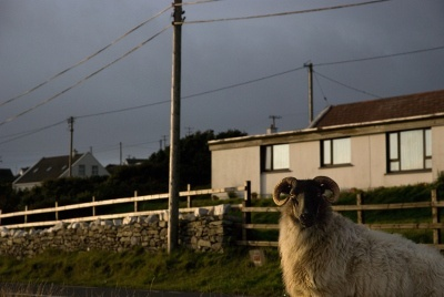 Ireland_FTTH.jpg
