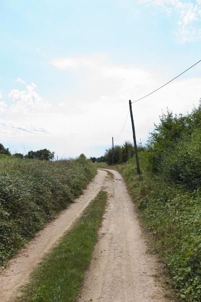 ThinkstockPhotos-rural2.jpg