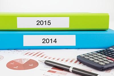 global fiber report 2014-2015